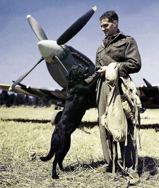 Kenley's former Wing Commander,